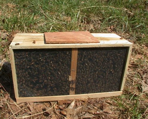 live in northern indiana couple questions beekeeping
